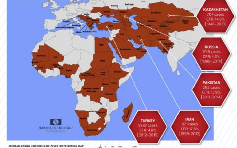 NEXT PANDEMIC: Ce este febra hemoragică Crimeea-Congo. Muscătura mortală a căpușei infectate